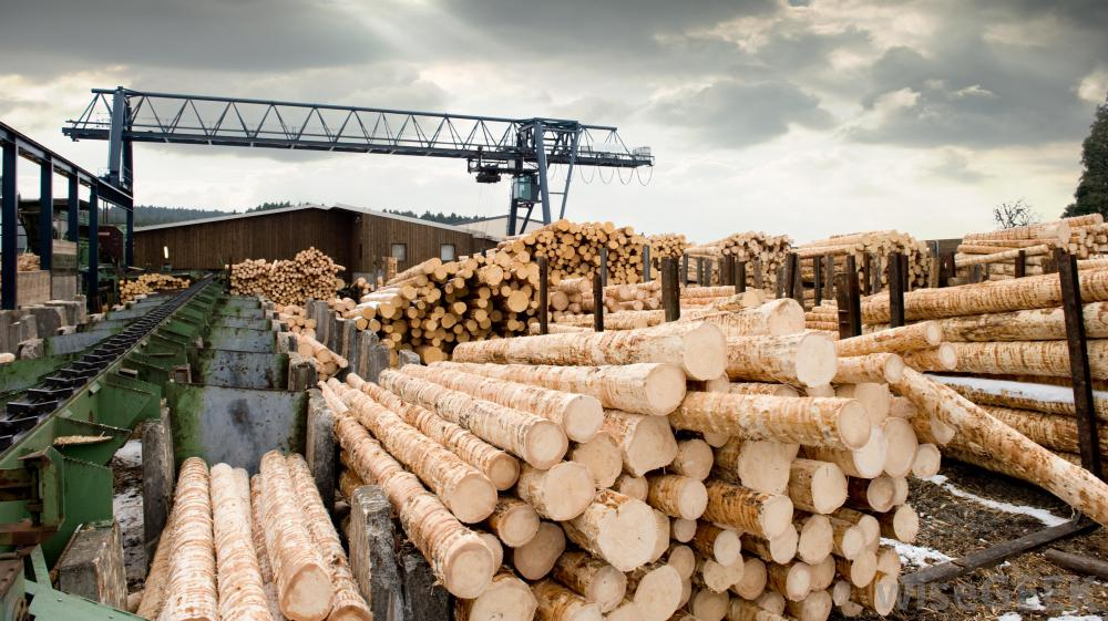 Wood quality types in piano manufacturing