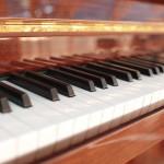 Harvey Chronicles of Piano Tuning