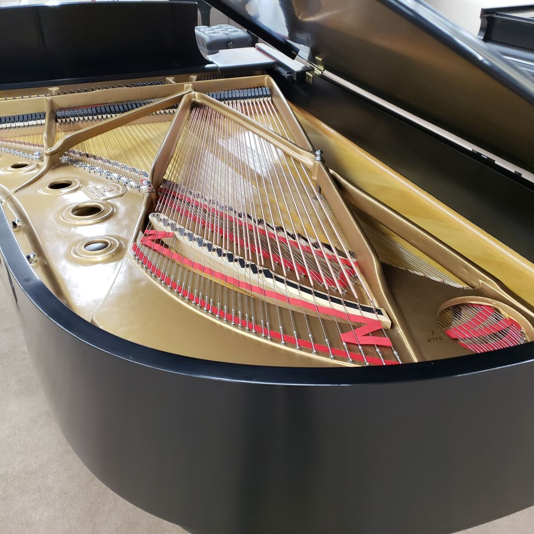 Piano Maintenance and Care Steinway model B